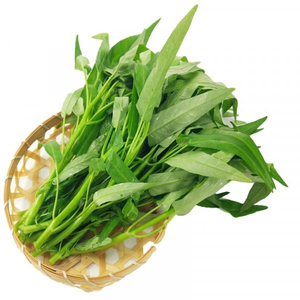 GREEN TON CHOY / 青通菜(空心菜) ~ 1.5LB