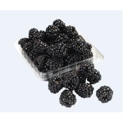 Blackberries / 黑莓一盒