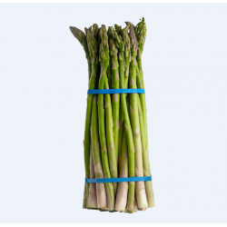 Green Asparagus / 芦笋 ~ 1扎/bouquet
