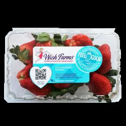 Strawberry / 草莓 - 1 Box