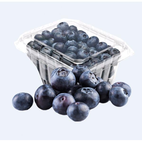 Blueberry / 蓝莓 - 1 Box