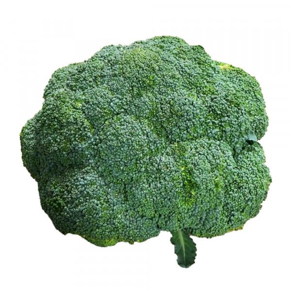 Broccoli Crowns  - 1 PC