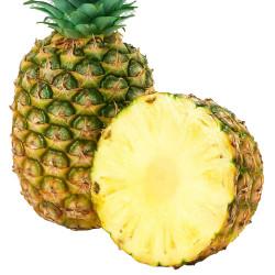 Pineapple / 菠萝 - 2 PC
