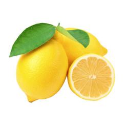 Lemon / 黄柠檬 - 4 PCs