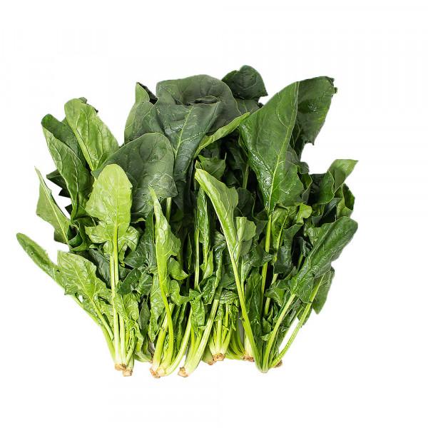 spinach / 新鲜菠菜 ~ 1.5lbs
