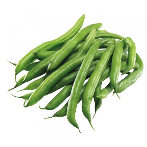 Green Beans ~ 1.5lbs