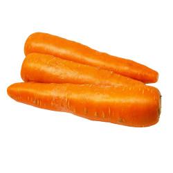 Carrots - 2PCs