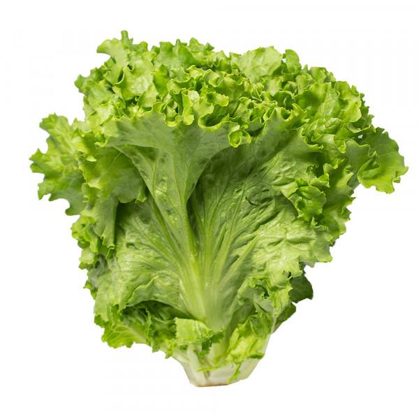 Green Leaf Lettuce / 唐生菜 - 3个